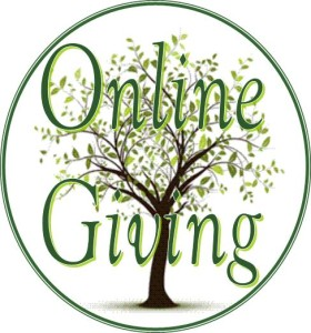 Image result for online giving button